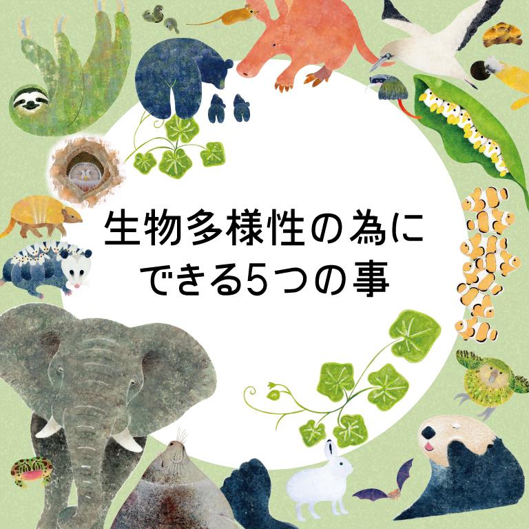 生物多様性を守る為にできる5つの事。