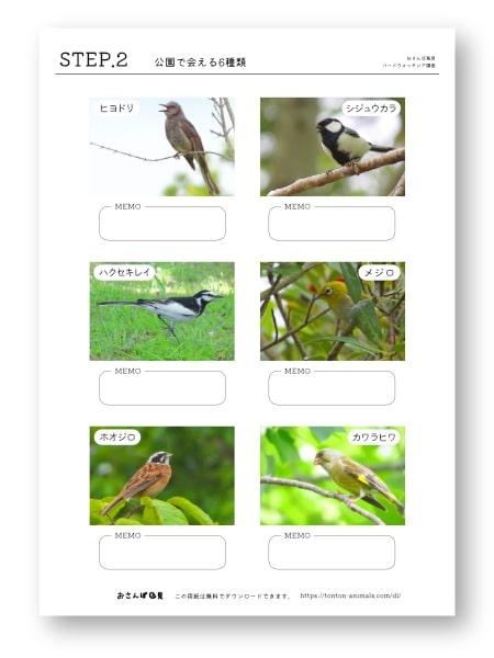 鳥探しのステップアップシートNo.2のバナー画像