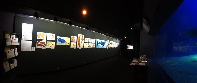 海遊館での作品展示