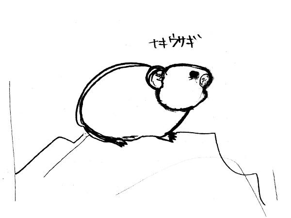 エゾナキウサギを描こうーすこし綺麗にした線画
