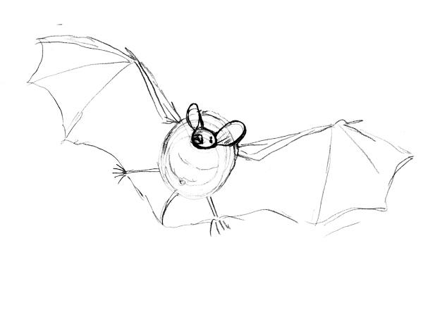 コテングコウモリの描き方ーとりあえず描く