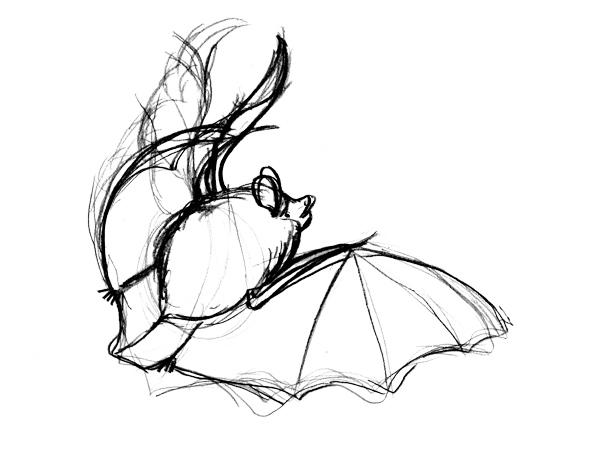 コテングコウモリの描き方ー別パターンを描いてみる