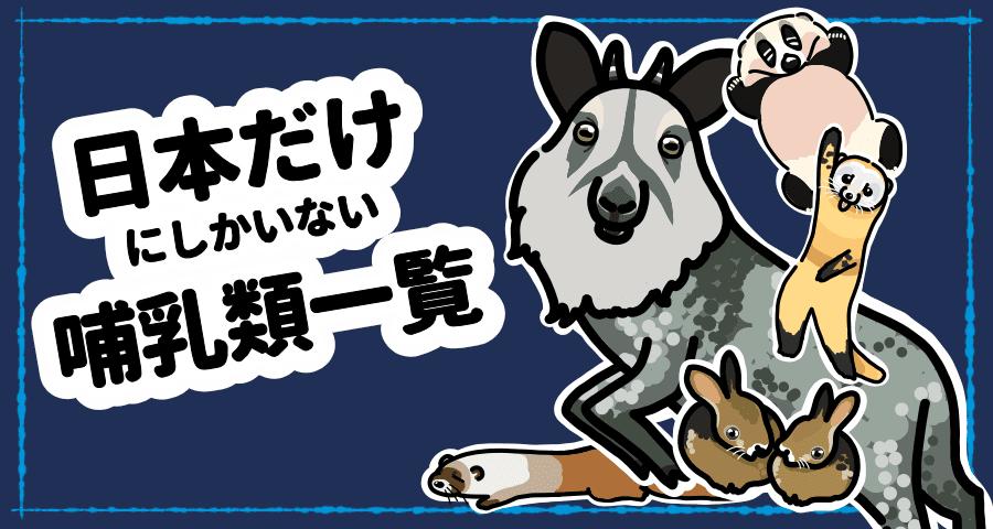 日本だけにしかいない哺乳類一覧