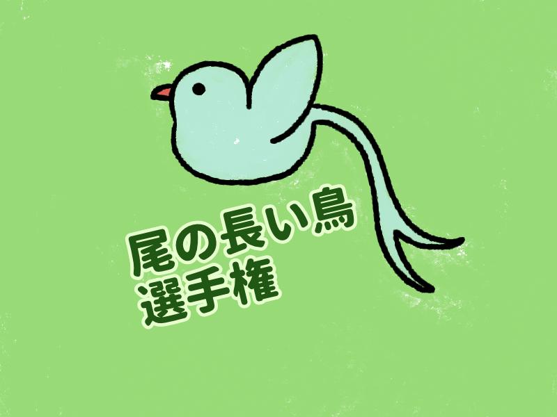 尾の長い鳥をご紹介~日本と世界の尾の長い鳥~