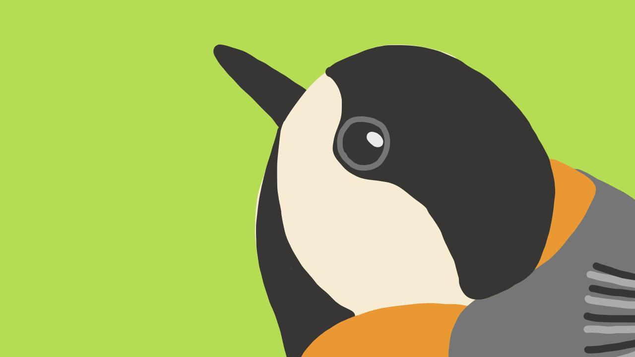動く野鳥のイラスト集