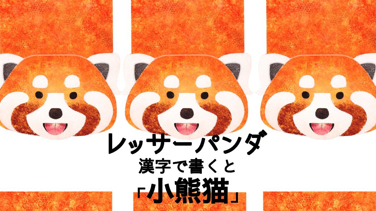 レッサーパンダは漢字で書くと?