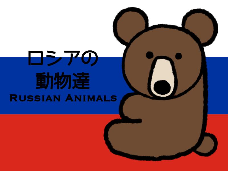 ロシアにはどんな動物が暮らしているのか?10種類を解説!!