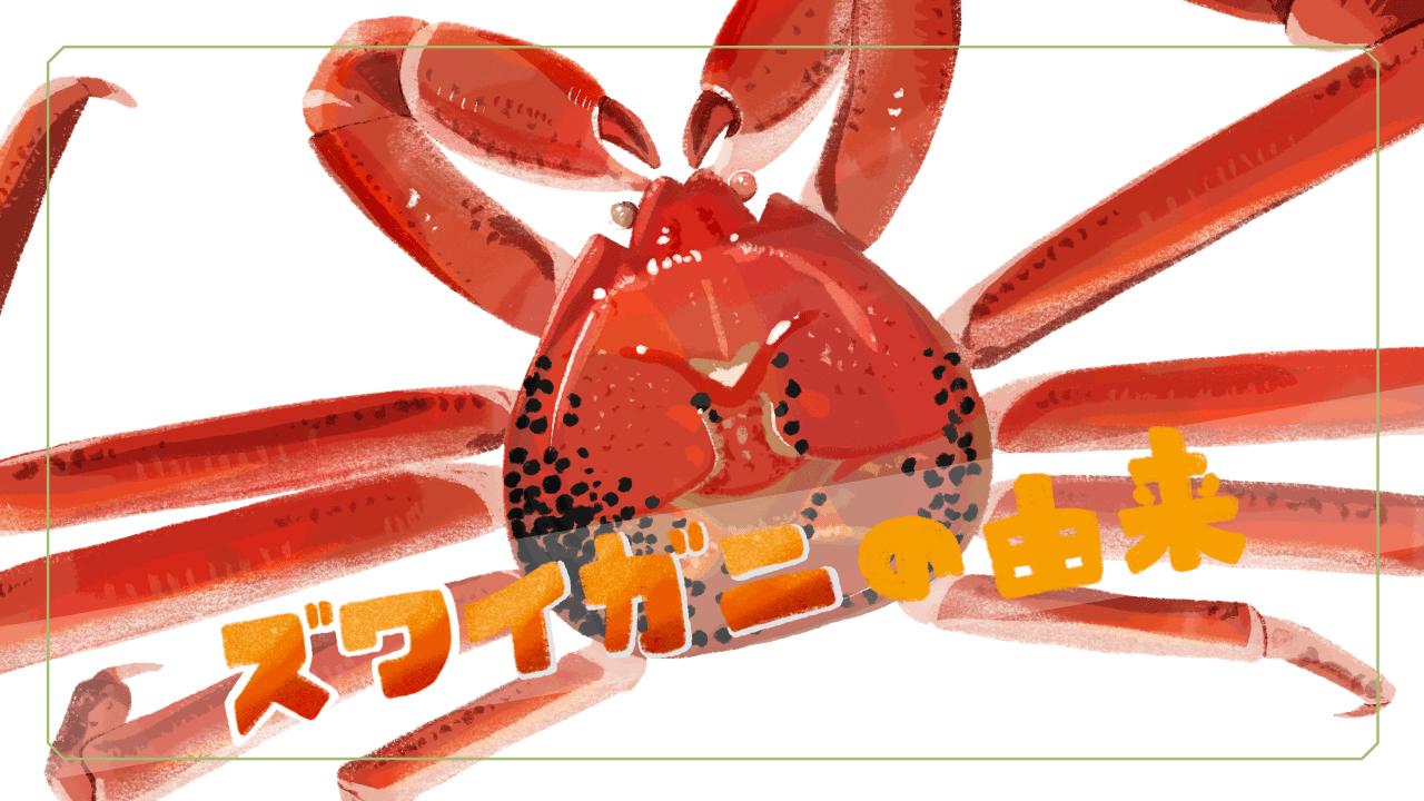 ズワイガニの由来をイラストでまとめました!