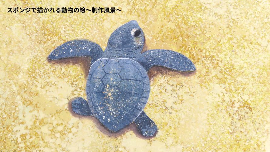 スポンジで描かれる動物の絵~アカウミガメ編~