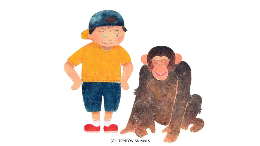 とんとんアニマルズ『ヒトとチンパンジー』