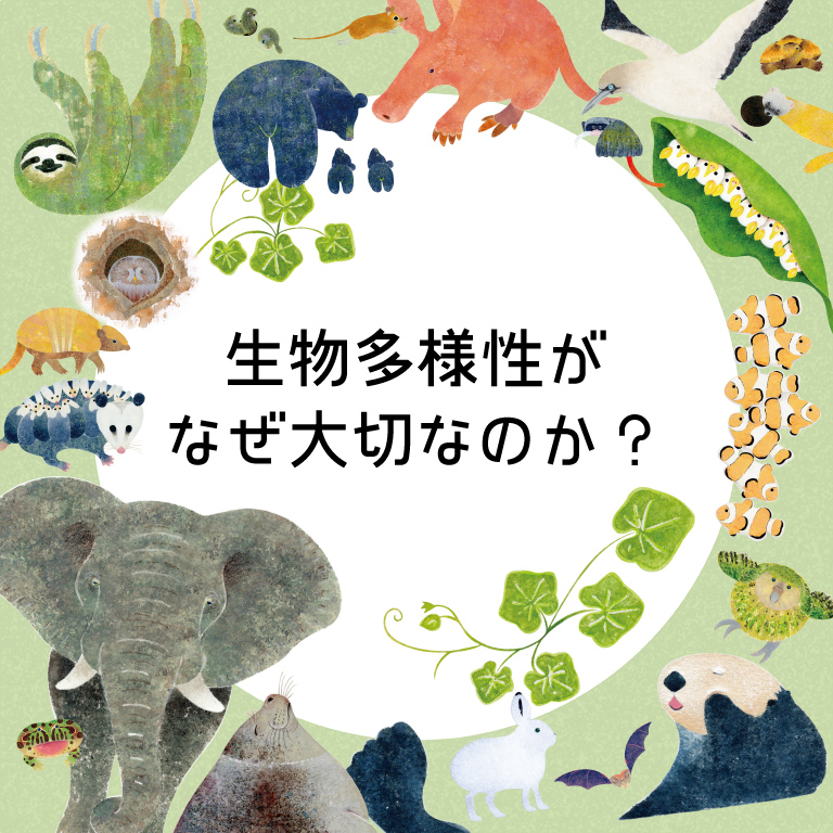生物多様性がなぜ大切なのか?